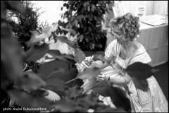 1998: La Louisiane invité d'honneur des Fêtes de Wallonie